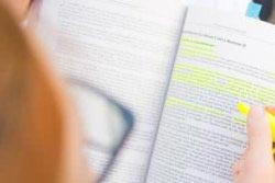 Essay Introduction transition words